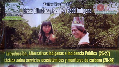 Support Indigenous REDD