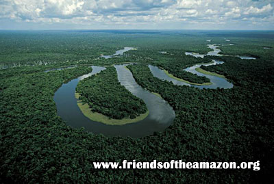 Meandering Amazon River
